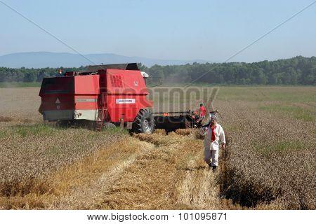 DAVOR, CROATIA - JUNE 26: Combine harvest wheat in Davor, Slavonia, Croatia on June 26, 2010