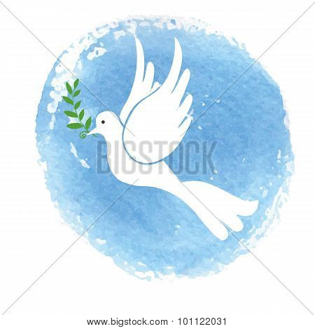 Peace day symbol.White pigeon,watercolor blue sky