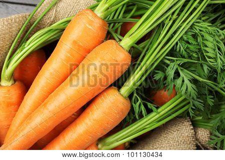 Fresh organic carrots on sackcloth, closeup