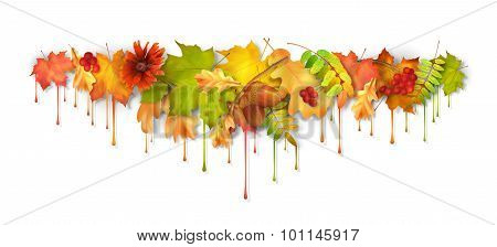 Autumn Vector Dripping Paint Leaves