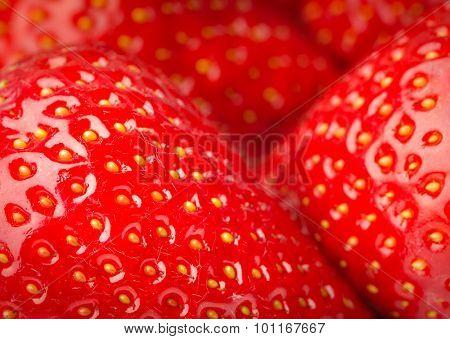 Closeup of red ripe strawberries