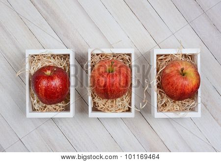 Overhead view of three mini wooden crates with gala apples inside. The fruit is sitting on straw in the boxes. The boxes are on a rustic whitewashed wood table.