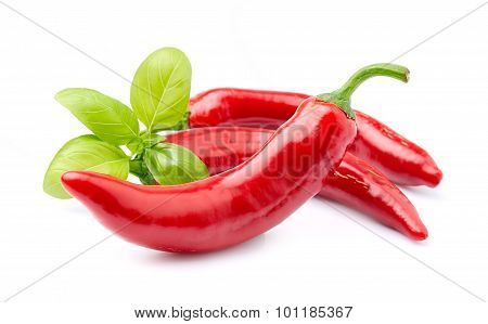 Chili Pepper With Basil Herbs