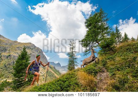 Girl Hiker Meets Ibex In The Mountains