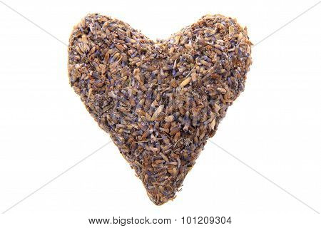 Heard From Lavender Flowers Isolated