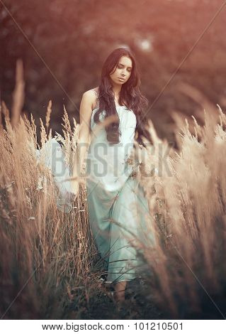 Beautiful, romantic woman in fairytale, wood nymph among tall grass and rays of light. Outdoor