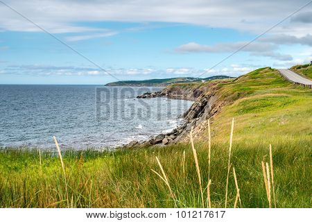 The rocky shoreline of Highlands National Park, Cape Breton, Nova Scotia, Canada