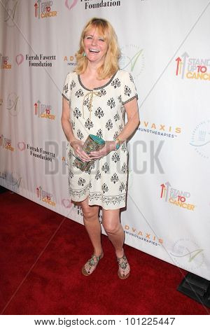 LOS ANGELES - SEP 9:  Cheryl Tiegs at the Farrah Fawcett Foundation Presents 1st Annual Tex-Mex Fiesta at the Wallis Annenberg Center for the Performing Arts on September 9, 2015 in Beverly Hills, CA