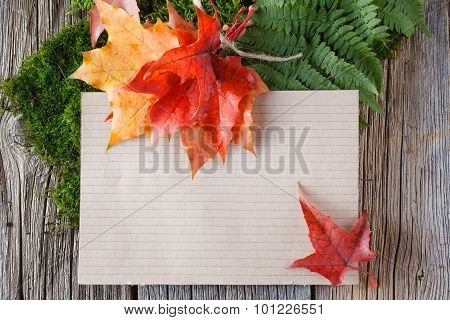 Paper For Inscription With Foliage