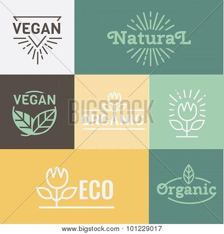 Natural and Health food. Organic,