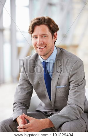 Vertical portrait of corporate businessman sitting