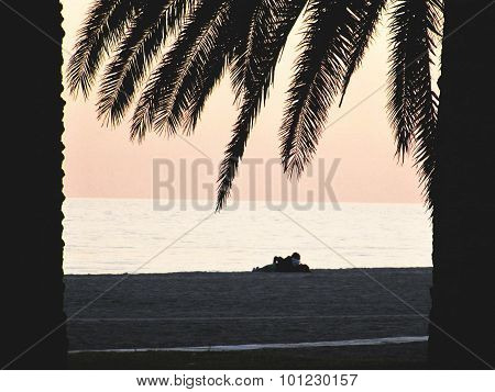 couple on the beach near see surrounded by palm trees