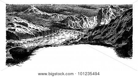 The fourth age of life on earth, vintage engraved illustration. Earth before man - 1886.