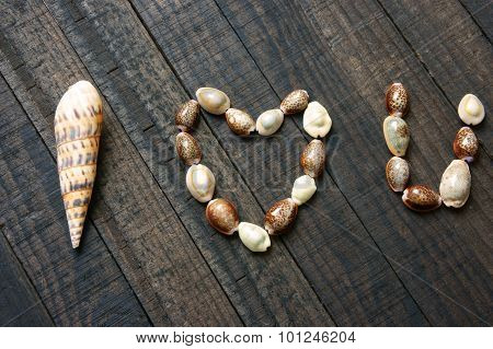 I Love You, Shell, Heart Shape, Valentine Day