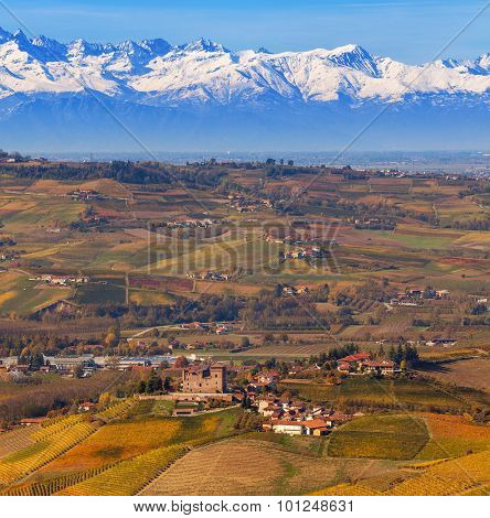 Autumnal hills and snowy mountain peaks on background in Piedmont, Northern Italy.