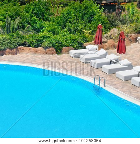 Swimming Pool And Lush Vegetation