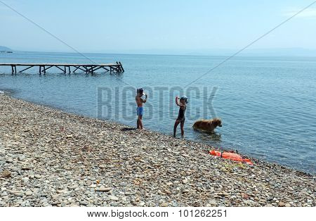 Children and their dog play on beach