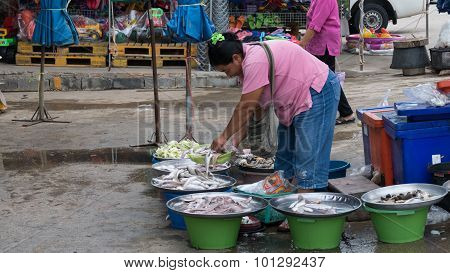 Woman Sell Fish In The Local Market