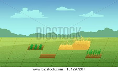Computer Game Haystack And Vegetable Patches.