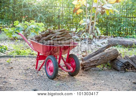 Red Color Double Wheel Barrow Carrying The Fire Wood