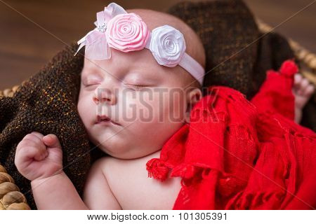 Newborn baby girl lying down inside the wicker basket