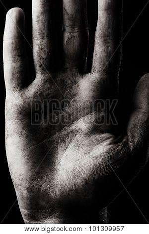 Palm Hand