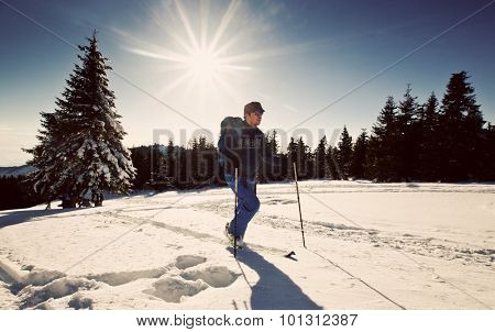 Cross-country skier
