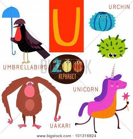 Cute Zoo Alphabet In Vector. U Letter. Funny Cartoon Animals:umbrellabird,urchin,uakari,unicorn. Alp