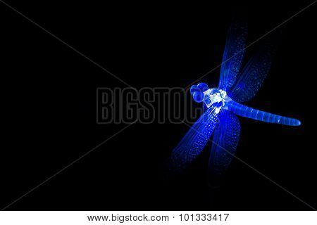 Blue Glass Ornament Dragonfly Glowing At Night