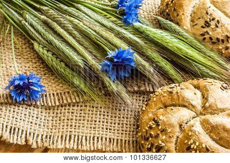Whole wheat rye bread rolls with ears of corn and cornflowers located on wood background. Rustic arr