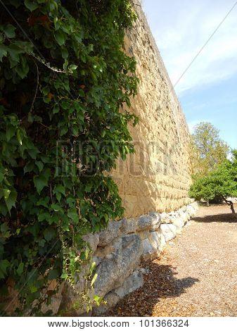 Profile of Roman wall