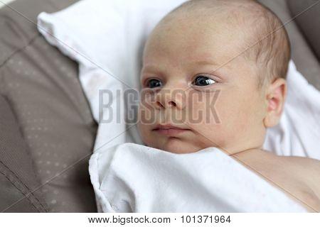 Pensive Newborn Baby