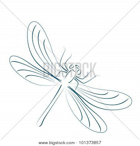 Sketched dragonfly.