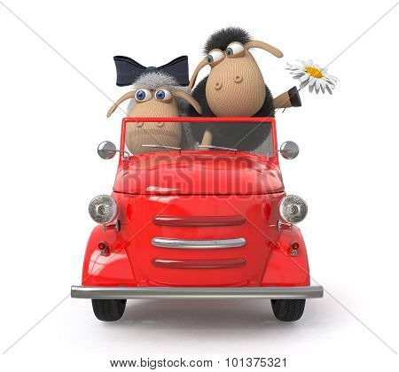 Cheerful Lambs Drive The Car