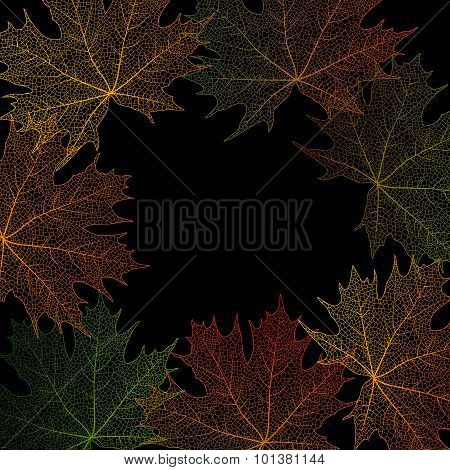 Maple Leaves Frame