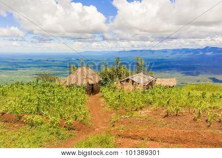 Rural Landscape In Tanzania