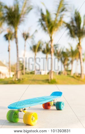 Light Blue Longboard Penny Board With Multicolored Wheels Ready For Extreme Outdoor Ride