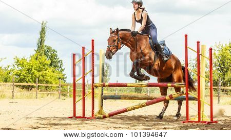 Woman Jockey Training Riding Horse. Sport.