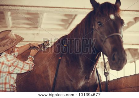 Woman With Little Cat Animal On Horse Horseback.