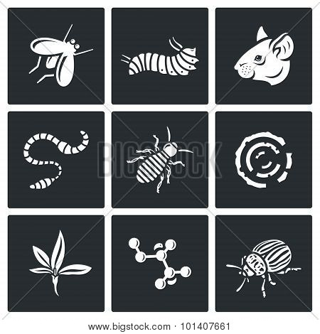 Parasites icons set. Vector Illustration. Vector Isolated Flat Icons collection on a black background for design