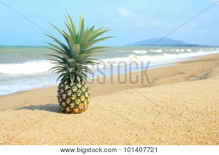 Pineapple On The Beach With Blue Sky