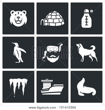 Antarctica Icons Set. Vector Illustration.