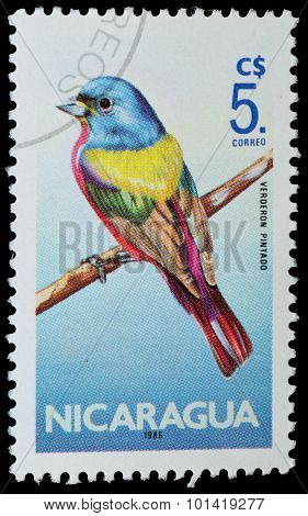 Nicaragua - Circa 1986: A Stamp Printed In Nicaragua Shows Verderon Pintado From The Series