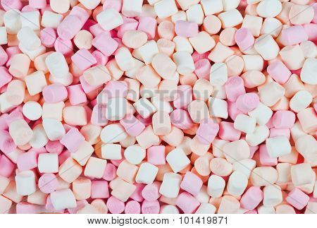 Background Or Texture Of Mini Marshmallows
