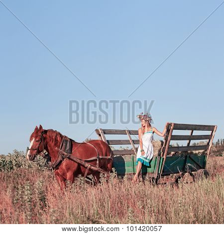 Pretty Girl With Wildflowers On The Horse Carriage In Summer Day Outdoors