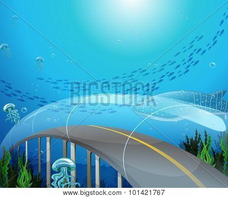 Glass tunnel under the ocean illustration