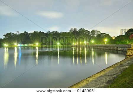 Macritchie Reservoir with trees by night