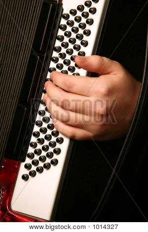 Hand Of The Musician