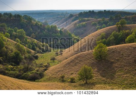 Landscape of hills covered with dry yellow grass at sunny autumn afternoon, north Serbia