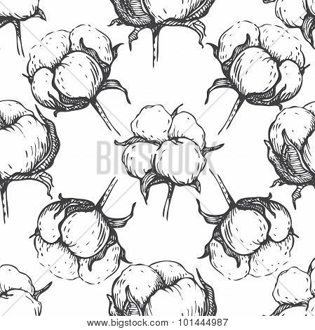 Vector Seamless Natural Cotton Engraving  Pattern.